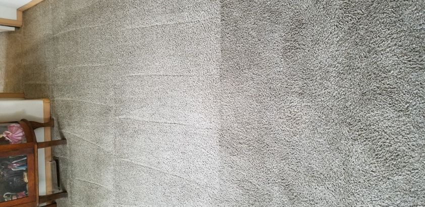 Carpet 03